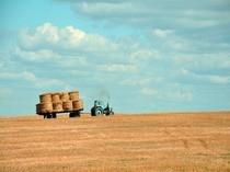 Oferte de utilaje agricole