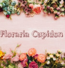 Florăria Cupidon angajează personal