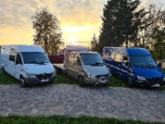 Firma transport cauta sofer cursa Italia