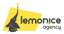 LEMON ICE AGENCY
