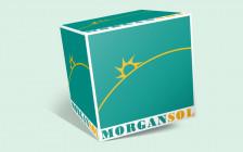 Cristina Spataru | MORGAN SOL