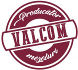 Mioara Ungur | VALCOM 50 SRL