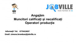 Jobville Group