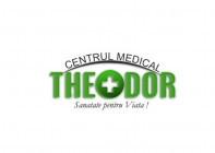 Centrul Theodor